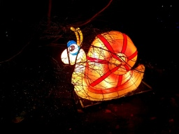 Magical Lanterns (19)