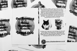 Cat-Spotting Issue 2 (2)